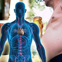 Чем вреден алкоголь для организма человека?