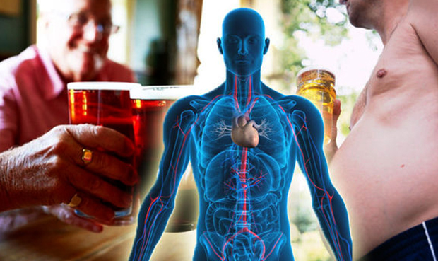 Влияние алкоголя на тело
