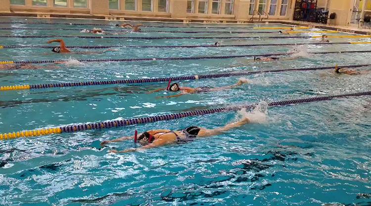 Люди плавают
