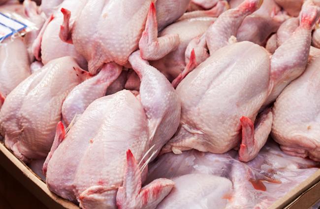 Много курицы