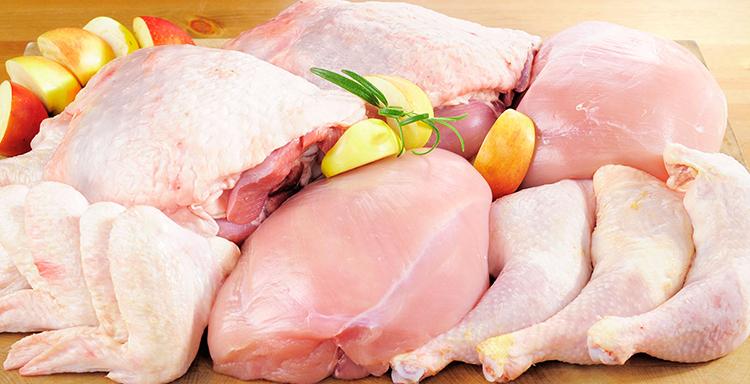 Свежее мясо курицы