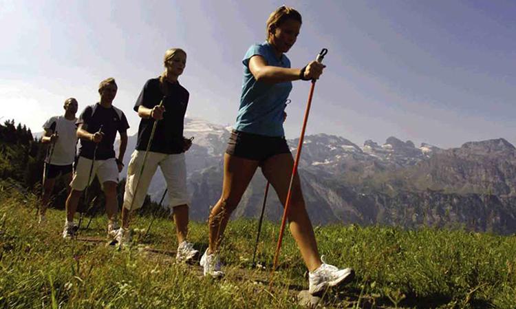Люди занимаются скандинавской ходьбой