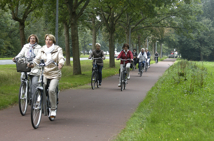 Люди катаются на велосипедах