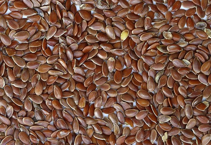 Много свежих семян льна
