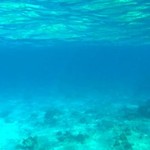 Польза морской воды для человека