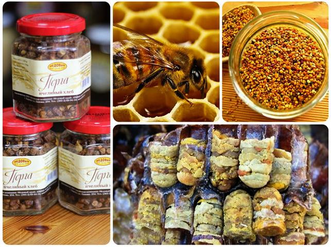 Производство пчелиной перги