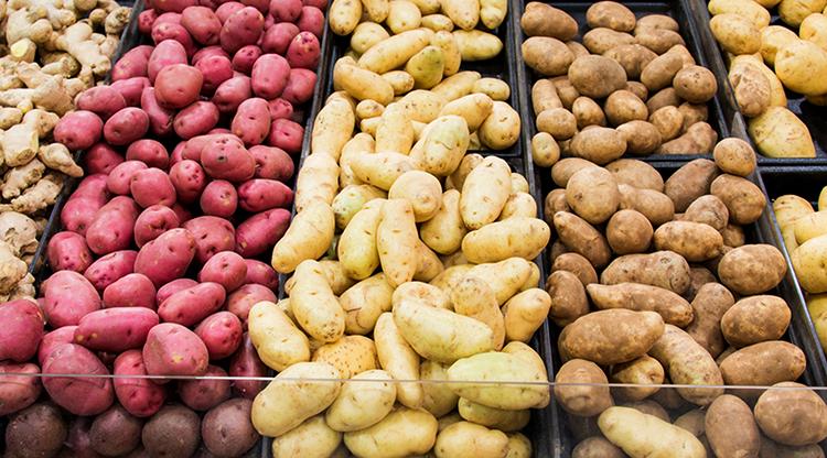 Виды картофеля