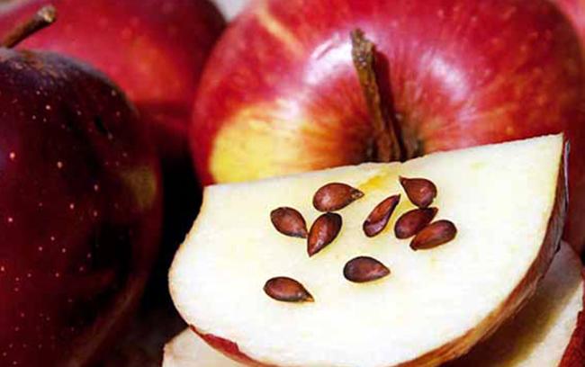Косточки на яблоке