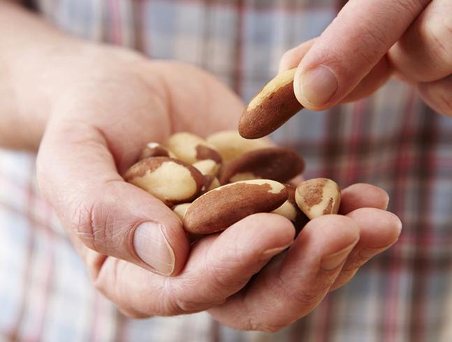 Бразильский орех — источник селена