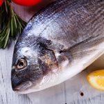 Рыба дорадо — польза и вред