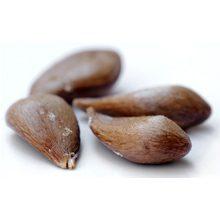 Косточки яблока: польза и вред для организма