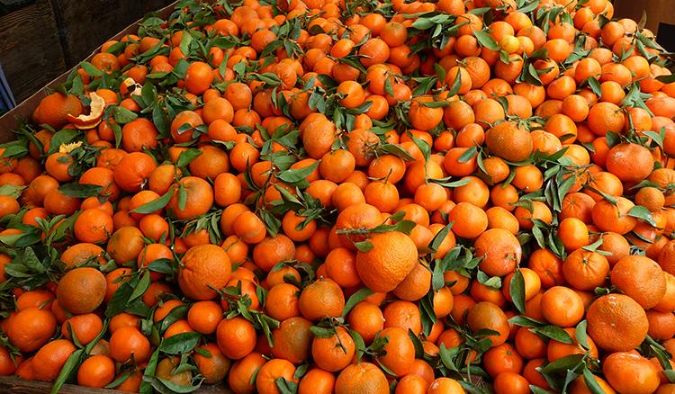 Много мандаринов
