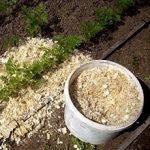 Опилки для огорода: польза и возможный вред