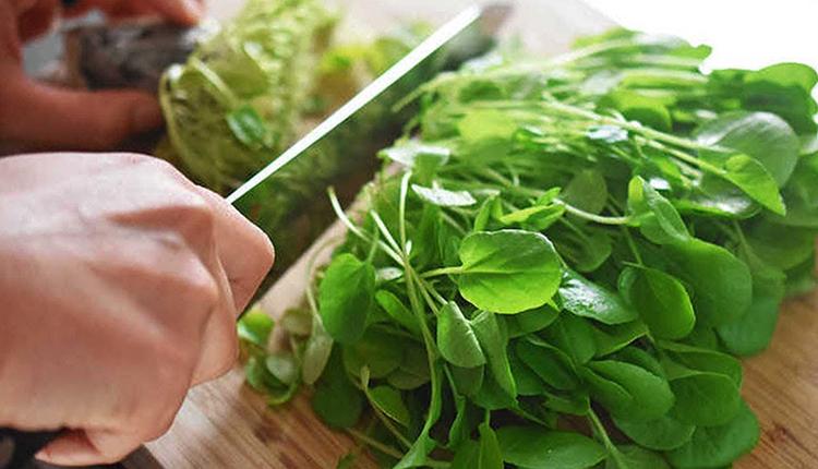 Приготовление кресс-салата