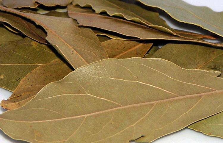 Приправа лавровый лист