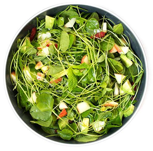 Салат из растения