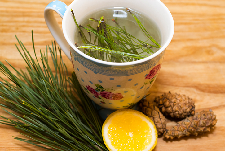 Чай из иголок