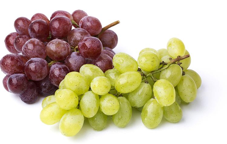 Виноград лежит