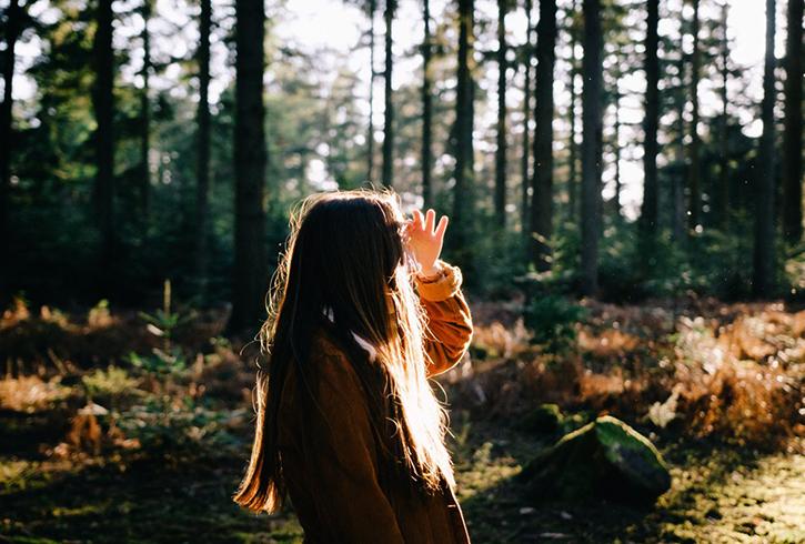 Человек в сосновом лесу