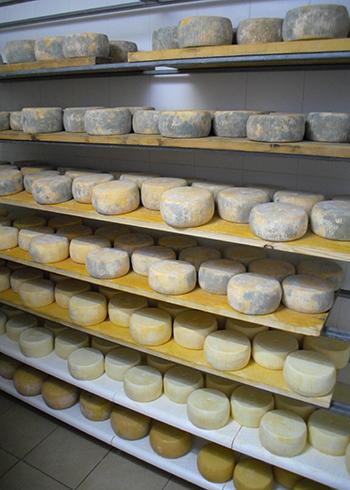 Приготовленный сыр
