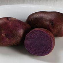 Синяя картошка — польза и вред