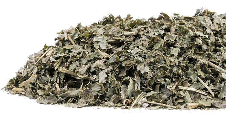 Сушенные листья ежевики