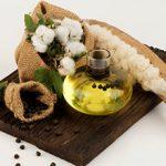 Хлопковое масло — польза и вред