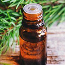 Пихтовое масло — польза и возможный вред