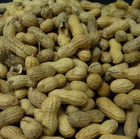 Много арахиса