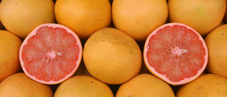 Выбор плодов