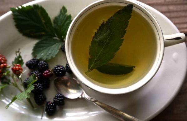Свежий чай из листьев ежевики
