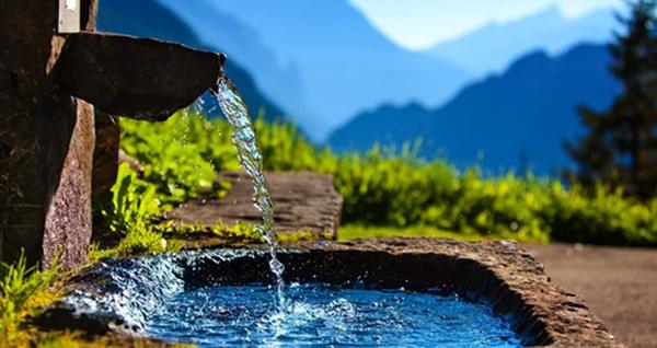 Вода из родника