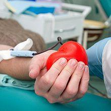 Сдача крови на донорство — польза и вред