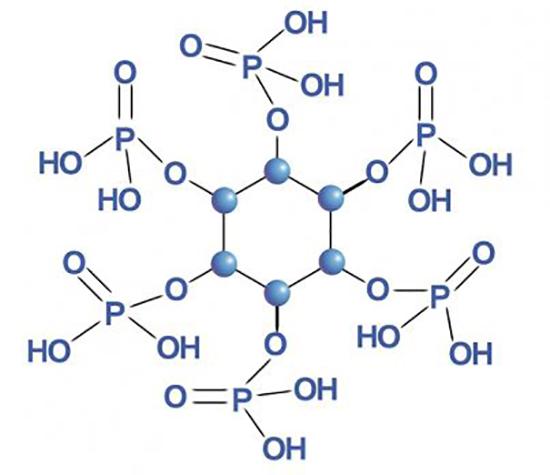 Структура фитиновый кислоты