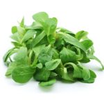 Салат корн: полезные свойства и возможный вред