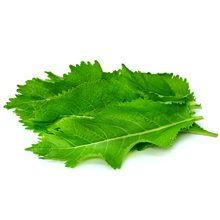 Листья хрена: полезные свойства и возможный вред