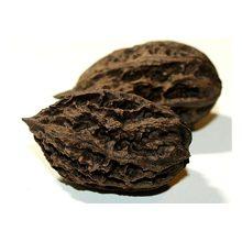 Маньчжурский орех — полезные свойства и вред