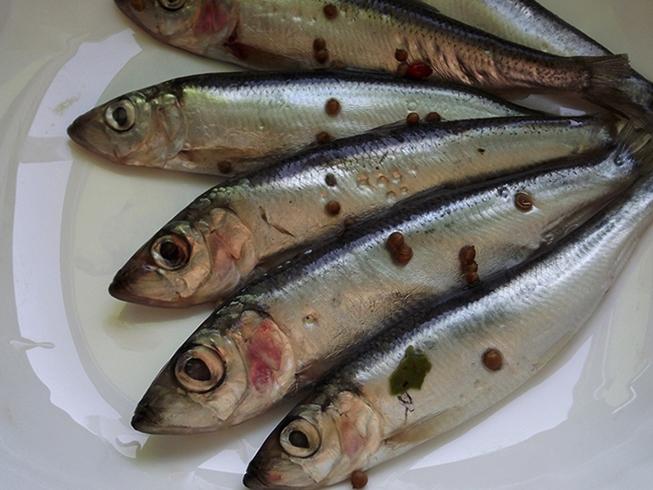Пять рыбок