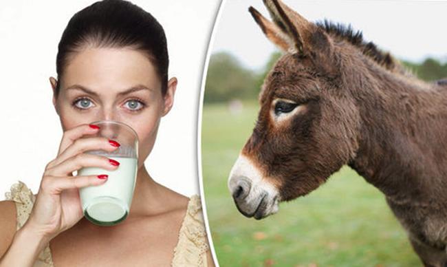 Употребление ослиного молока
