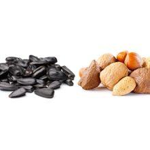 Что полезнее кушать семечки или орехи
