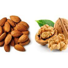 Что полезнее миндаль или грецкий орех?