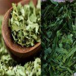 Что полезнее сушеные листья или ферментированные