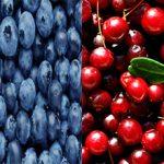 Какая ягода полезнее черника или брусника?