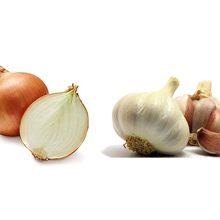 Что полезнее для организма лук или чеснок?