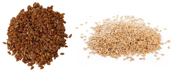 Коричневые и белые семена льна