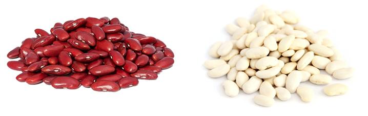 Красная и белая фасоль