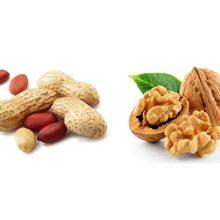 Что более полезно арахис или грецкий орех