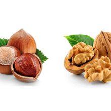 Фундук или грецкий орех — что полезнее
