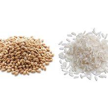 Что более полезно перловка или рис?