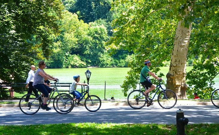 Семья катается на велосипеде